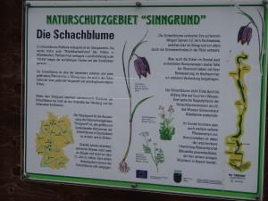 Übersicht über die Verbreitung der Schachblume